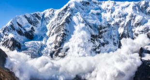 180-Millionen-Dollar-Programm gestartet, um Aave und Curve zu Avalanche zu bringen