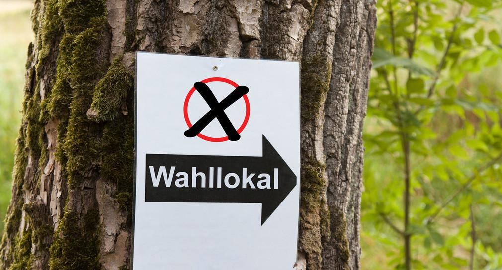Baum mit einem Hinweisschild auf ein Wahllokal.  Quelle: Fotolia
