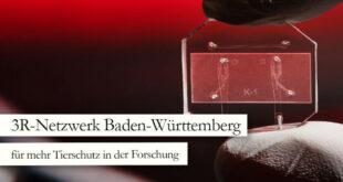 Auftaktveranstaltung des 3R-Netzwerks Baden-Württemberg
