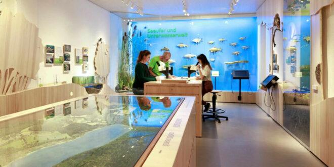 Ausstellung zum Naturschutzgebiet Mindelsee eröffnet