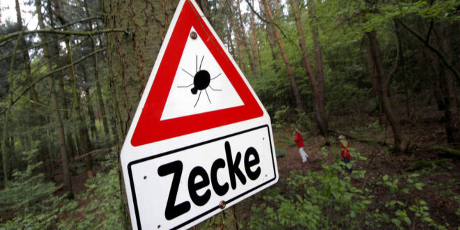 Baden-Württemberg ist ein FSME-Risikobereich