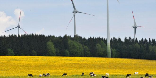 Beim Windkraftausbau liegt Baden-Württemberg bundesweit auf Platz fünf
