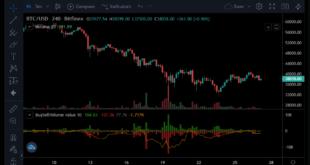 Bitcoin Bulls zielen auf die Widerstandsstufe von 43.000 USD