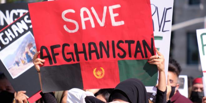 Bookblocks.io verkauft 2.200 NFTs, um afghanische Frauen zu unterstützen