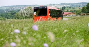 Staat finanziert 2021 elf neue Regionalbuslinien