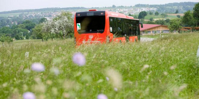 Das Angebot an regionalen Buslinien wird weiter ausgebaut