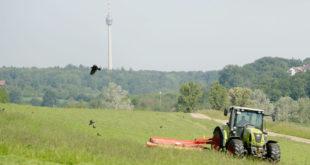 Die EU muss die Agrarpolitik naturschutzfreundlicher gestalten