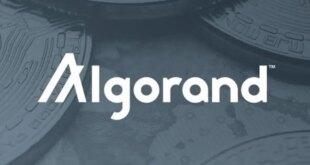 Die Regierung von El Salvador wählt Algorand für ihre Blockchain-Infrastruktur
