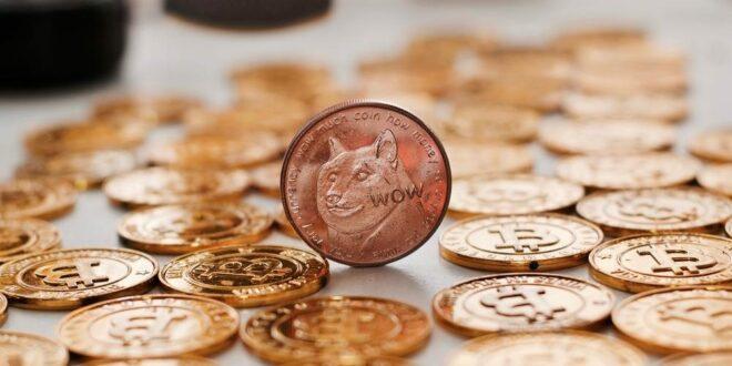 Dogecoin-Mitschöpfer Jackson Palmer kritisiert die Kryptoindustrie für den Kapitalismus