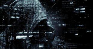 DubaiCoin macht einen Sturzflug nach Betrugsberichten, nachdem er um 1000% gestiegen ist