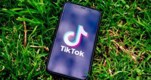Experten äußern sich zum TikTok-Kryptoverbot