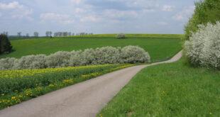 Förderung für die nachhaltige Modernisierung von Landstraßen