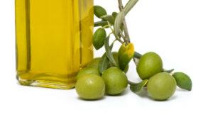 Forschungsergebnisse zur Acrylamid-Kontamination von Oliven veröffentlicht