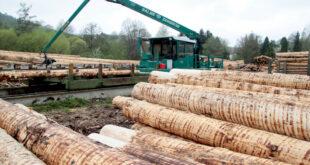 Forstminister Hauk tauscht sich mit Vertretern der Holzindustrie aus