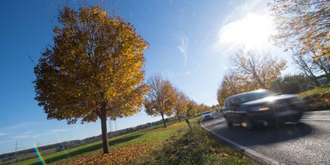 Grünes Licht für die weitere Planung der Schramberg-Umgehungsstraße