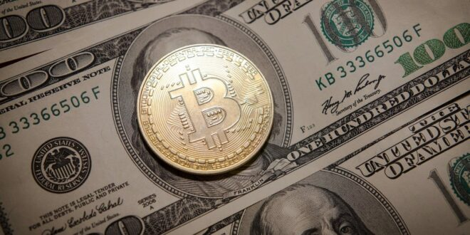 IWF warnt vor Einführung von Krypto als Landeswährung