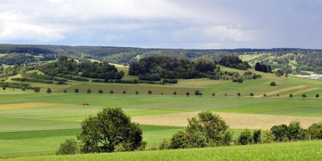 Land fördert die Landkonsolidierung in Mudau-Scheidental