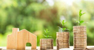 Lark Davis gibt Tipps, um zu vermeiden, dass bei Krypto-Investitionen Geld verloren geht