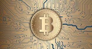 Laut Bitcoin Mining Council hat Elon Musk keine Rolle innerhalb der Gruppe.