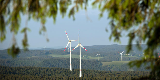 Neue Regelung zum Artenschutz beim Bau von Windkraftanlagen