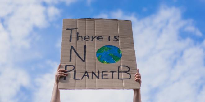 Neuer REVERSE-Token hilft, den Klimawandel umzukehren