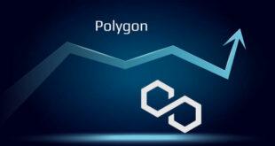 Polygon steigt um 15 % - Ist dies ein guter Zeitpunkt zum Kaufen?