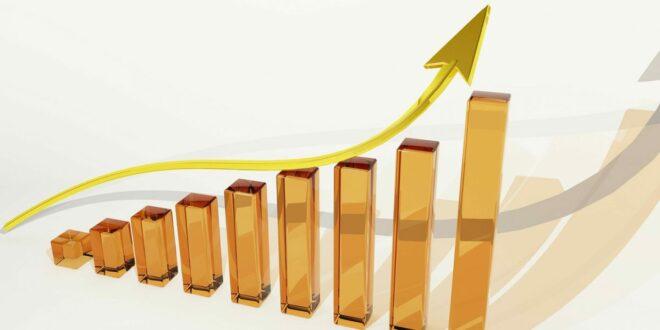 Quant und Algorand führen die Charts an, während ADA und BNB fallen