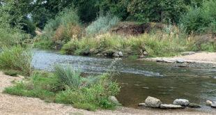 Rund 83,5 Millionen Euro für Hochwasserschutz und Wasserökologie
