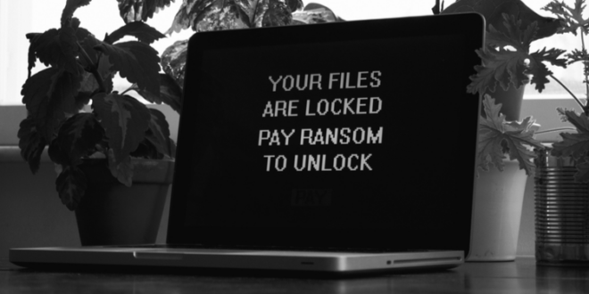 Senator Warren stellt Ransomware Disclosure Act vor