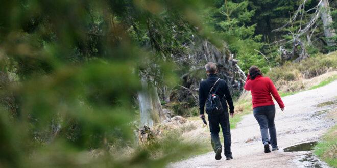 Sommertreffen Naturpark Calw gibt vielfältige Impulse