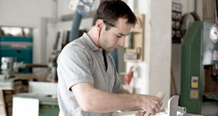 Staat fördert das Deutsche Handwerksinstitut