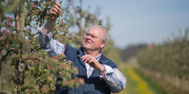 Subventionen für Obst- und Weinbau-Ertragsversicherungen