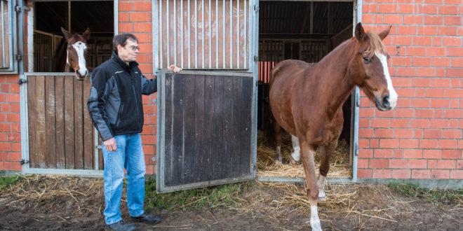 Überarbeitete Richtlinien zum Tierschutz im Pferdesport