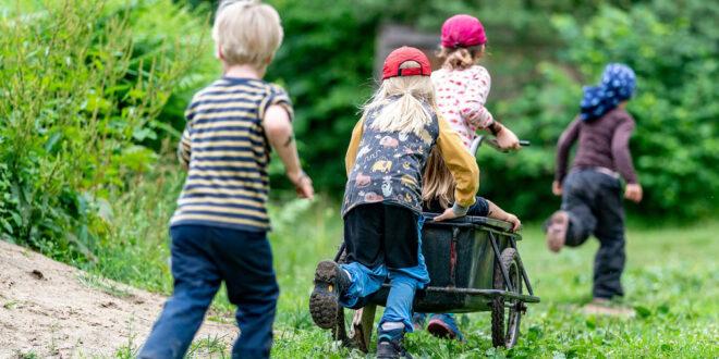Verankerung des Kinderschutzes in der Jugendarbeit