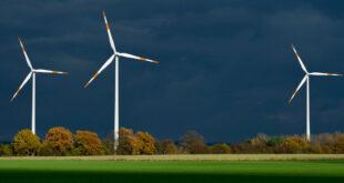 Vermarktungsoffensive für Windkraft im Staatswald beschlossen