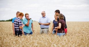 Weitere Koronahilfe für Weiterbildungsanbieter in ländlichen Gebieten