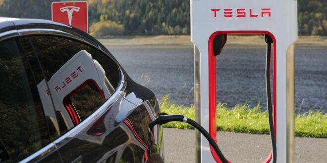 Wer wird der nächste Tesla-Liebling sein?  Jeder will Elon Musk umwerben