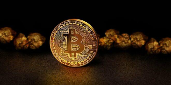 Wir werden alle sterben, wenn Bitcoin weit verbreitet ist – chinesischer Ökonom